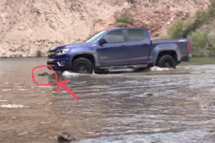 Video: 2017 Chevy Colorado Off-Roading Fail