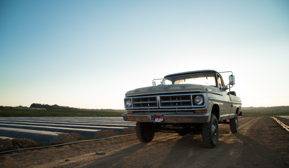 This 1972 F-250 Is Back From When Trucks Were Real
