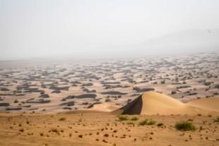 Dakar 2020: All-American Fastball Racing Keeps Swinging