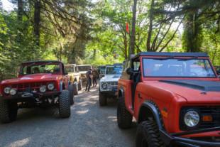 Northwest Bronco Round Up Gathers Along The Scenic Oregon Coast
